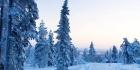 Talvisaika