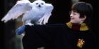 Harry Potter- Viisasten kivi