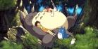 Totoro visa