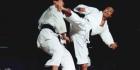 Karate-d