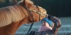 Hevosia näköpiirissä