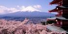 Japani-Nippon